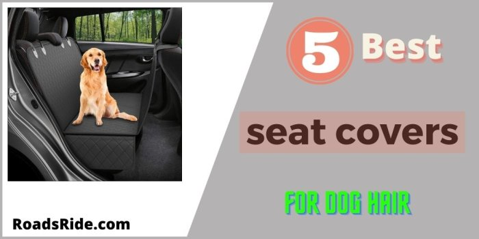 Read more about the article 5 Best seat covers for dog hair (Review & Buying Guide)